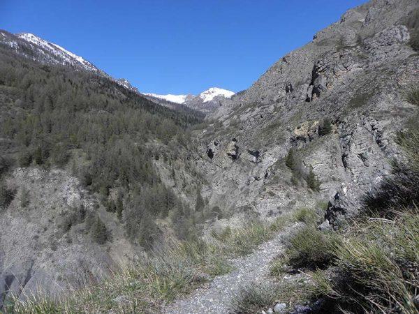 La vallée du torrent de Sestrière