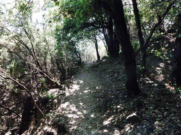 Sentier vers Manarola