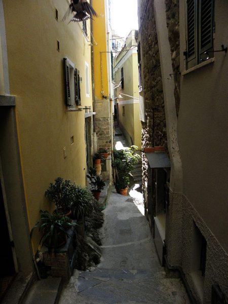 Dans les rues de Vernazza